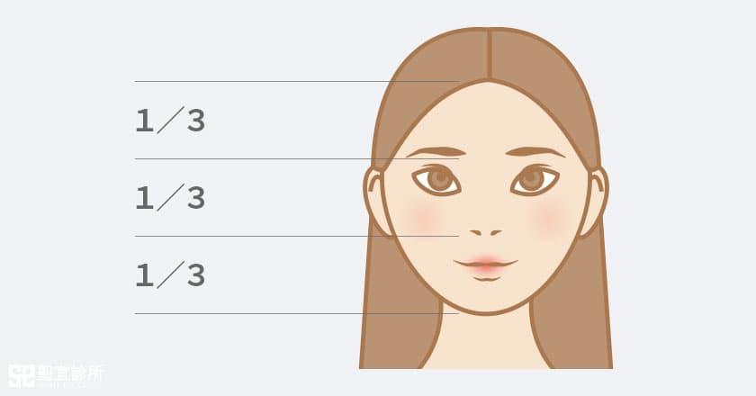 鼻子長度比例